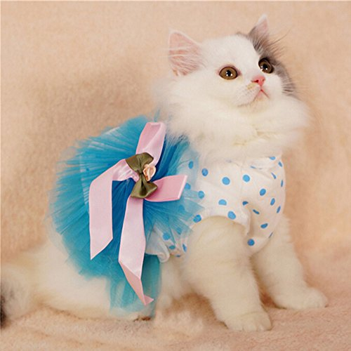 i'Pet® Floral Princess Cat Party Dress Small Dog Tutu Ball Gown with Flower Puppy Multi-layer Lace Mesh Skirt with Dot Doggy Photo Apparel Doggie Birthday Stretchy Clothes Spring Summer Holiday Wear with Ribbon Halloween Classics Collection Costume (Blue, Large)