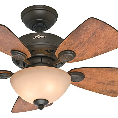Hunter Fan 34 inch New Bronze Finish Ceiling Fan with Tea-Stain Glass Bowl Light Kit Renewed