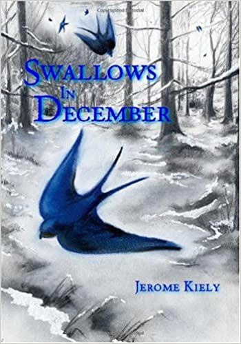 Book Swallows in December