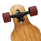 APOLLO Longboard Skateboards - Premium Long Boards