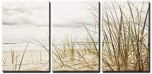 Close up of a Tall Grass on a Beach During Stormy Season x3 Panels