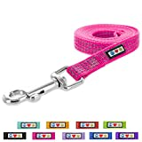 Pawtitas Pet / Puppy Reflective Dog Leash Extra Small / Small 6 ft. Pink