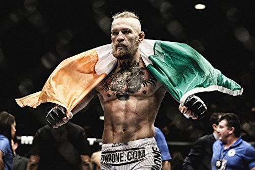 Conor McGregor Mma Fighter Poster