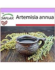 SAFLAX - Medicinale Planten - Chinese Bijvoet - 250 Zaden - Artemisia annua