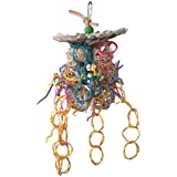 Super Bird Creations 10 by 5-1/2-Inch Mexican Hat Dance Bird Toy, Medium