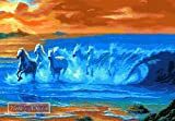 Wild waves - Horses counted cross stitch kit (with 16 ct aida) offers