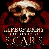 51eYqe6IzeL. SL160  - Life of Agony - The Sound of Scars (Album Review)