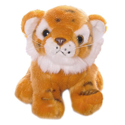 dress up a baby tiger - 3