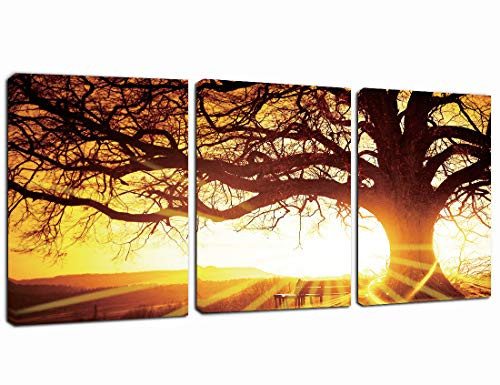 Canvas Wall Art Yellow Sunset Tree Painting- Modern Canvas Print 12