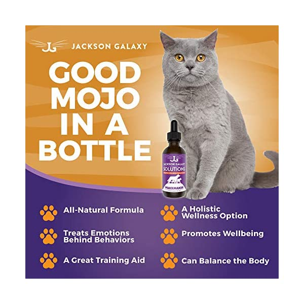 Jackson Galaxy: Peacemaker (2 oz.) - Pet Solution - Promotes Sense of Community - Can Reduce Aggression, Tension, Jealousy - All-Natural Formula - Reiki Energy 3