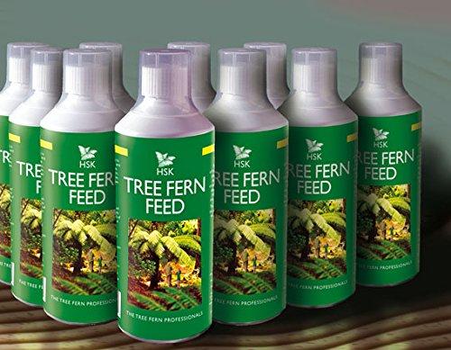 Alimento para helecho arbóreo, HSK, 500 ml: Amazon.es: Jardín