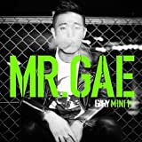Mr.Gae (Mini Album)