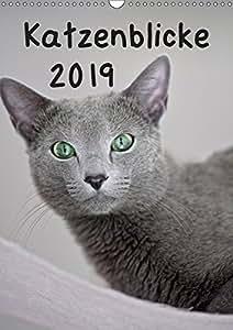 katzenblicke 2019 der kalender f r alle. Black Bedroom Furniture Sets. Home Design Ideas