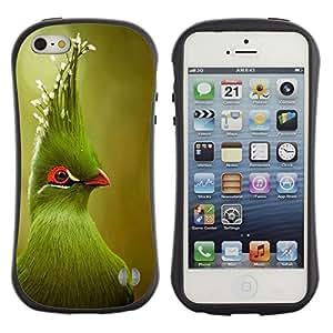 Suave TPU GEL Carcasa Funda Silicona Blando Estuche Caso de protección (para) Apple Iphone 5 / 5S / CECELL Phone case / / green tropical bird green blurry nature /