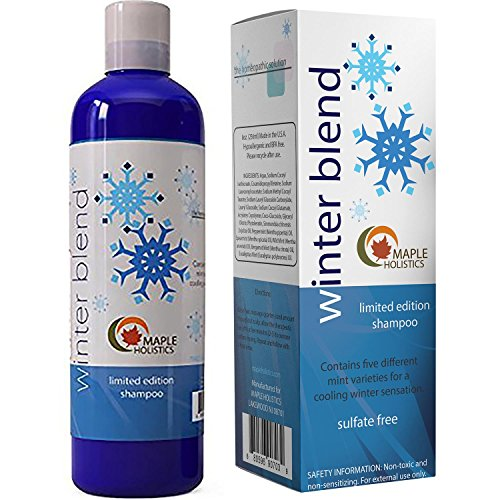 Daily Shampoo for Color Treated Hair Hypoallergenic Sulfate Free Hair Cleanser for Oily Scalp with Cooling Vitamin Rich Pure Mint Aromatherapy Blend with Jojoba Oil For Healthy Hair For Men - Hair Shampoo Mint Oily