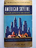 img - for AMERICAN SKYLINE the Growth and Form of Our Cities and Towns book / textbook / text book