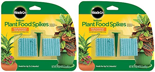 plant food sticks - 7