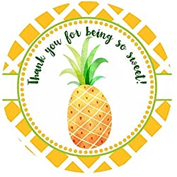 Sweet Pineapple Thank You Sticker Labels - Summer Tropical Fruit Party Favor Labels - Set of 30