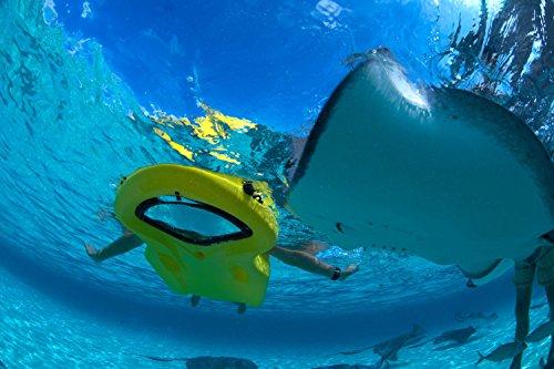 ReefBoard A1 Basic Sea Sled Bodyboard