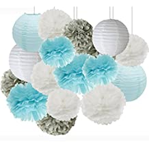 Frozen Themed Party Bridal Shower Decorations Baby Boy Birthday Party Supplies Baby Shower Decorations Furuix 16 pcs White Blue Grey 10inch 8inch Tissue Paper Pom Poms Paper Lanterns Mixed Package