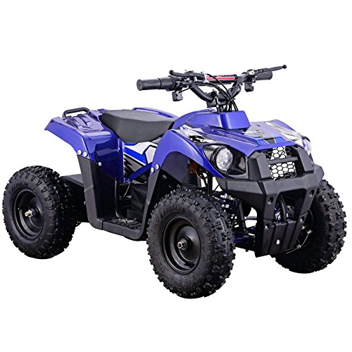The Monster Brushless Moto 500W 36V Kids Electric ATV (BLUE)