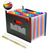 24 Pockets Multicolored Expanding Files Folder Portable A4 Expandable Accordion File Organizer, High Capacity Plastic File Wallets Stand Bag with Colored Labels for Office/Business/Study(24 Pockets)