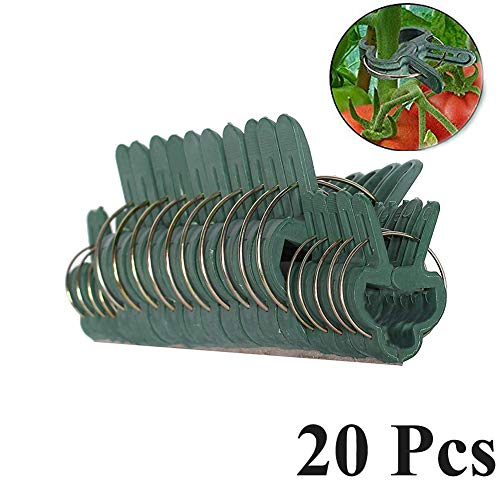 TYLife Industrial Tools 20Pc Gentle Plastic Gardening Clips Plant Flower Lever Loop Gripper Clips for Straightening Plant Stems (Butterfly Hose Holder)