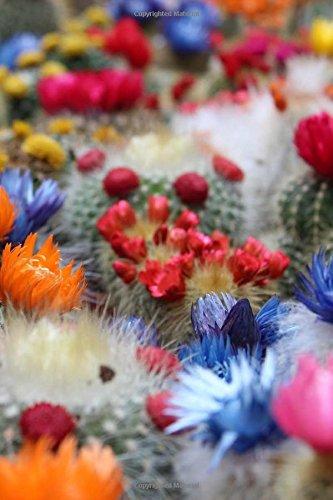 Flowering Cactus Notebook: 6