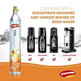 PASONG 60L Co2 Carbonator Compatible with