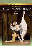 マリアネラ・ヌニェス / 英国ロイヤル・バレエ団「ラ・フィーユ・マル・ガルデ」(全2幕) DVD