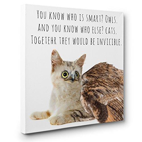 Owlat Hybrid Animal CANVAS Wall Art Home Décor