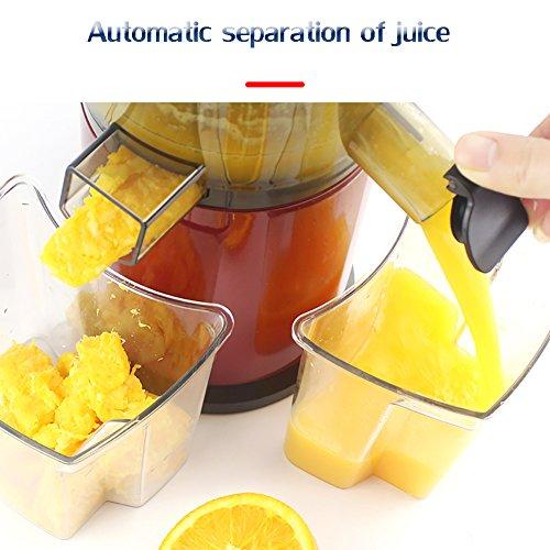 DULPLAY Quiet Slow Speed Masticating juicer,Healthy Fruit and Vegetable 180-watt,Bpa Free Metallic Juicer Machine -red 45x15x17cm(18x6x7inch) by DULPLAY (Image #5)