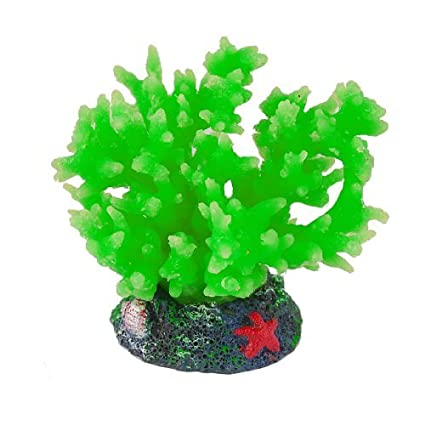 Amazon.com : eDealMax Base de cerámica de silicona acuario Coral Decoración, Verde : Pet Supplies