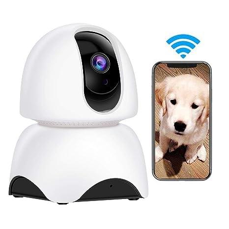 Amazon.com: Little ZhuZhu - Cámara de vigilancia para perro ...