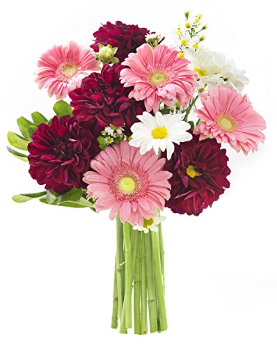 California Grown Collection: Dahlia's Garden Seasonal Bouquet (15 Stems) of Grower's Choice without - Flower Bell Tulip