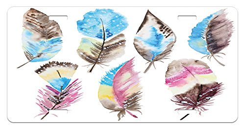 Feather License Plate by Ambesonne, Abstract Feathers with Artistic Display Watercolor Style Boho Inspiration Vintage, High Gloss Aluminum Novelty Plate, 5.88 L X 11.88 W Inches, Multicolor (Display Watercolor)