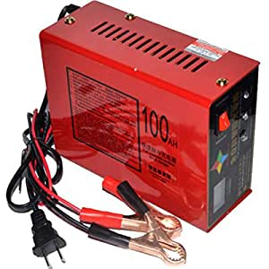 Amazon.com: Cargador de batería de coche eléctrico de 110 V ...