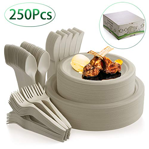 Fuyit 250Pcs Disposable Dinnerware Set, Compostable Sugarcane Cutlery Eco Friendly Tableware Includes Biodegradable Paper Plates, Forks, Knives and Spoons for Party, Camping, Picnic, BBQ(Natural)
