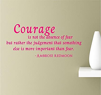 Amazoncom Evelyndavid Courage Is Not The Absence Of Fear But