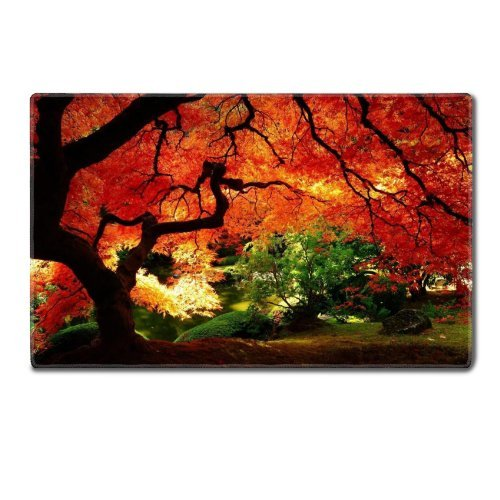 Fall Oldest Tree Autumn Variety Colors Table Mats Customized Made to Order Support Ready 24 Inch (610mm) X 14 15/16 Inch (380mm) X 1/8 Inch (4mm) High Quality Eco Friendly Cloth with Neoprene Rubber Luxlady Small Deskmat Desktop Mousepad Laptop Mousepads