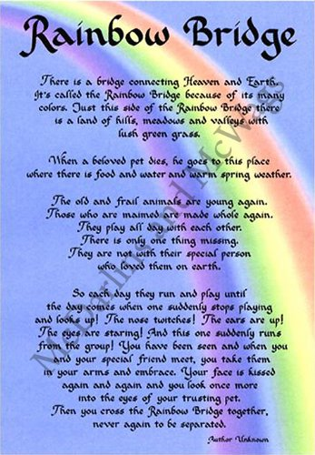 Amazoncom Mcdarlins Calligraphy Rainbow Bridge Dog Memorial Wall