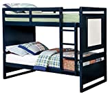 HOMES: Inside + Out IDF-BK901BL Indio Bunk Bed Childrens Frames, Twin / Twin, Blue