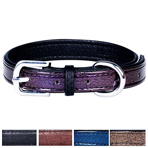 "Blueberry Pet 5 Colors Faux Leather Snake Print Embossed Dog Collar, Byzantium Purple, Medium, Neck 13-17"", Adjustable Collars for Dogs"