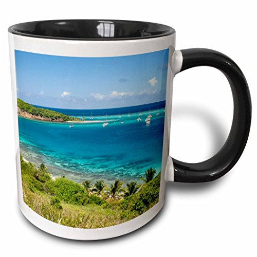 Grenadines Mug (3dRose mug_72519_4 St Vincent and the Grenadines, Harbor boats CA35 DSR0016 Daniel Schreiber Two Tone Black Mug, 11 oz, Black/White)
