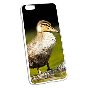 Baby Duck - Duckling Snap On Hard Protective Case for Apple iPhone 6 6s Plus