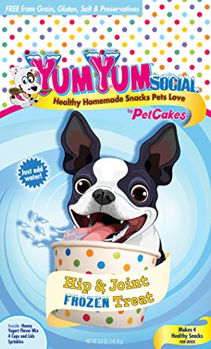 (Yumyum Social 859989002761 Frozen Yogurt Dog Treats Healthy Homemade Frozen Yogurt Ice Cream For Pets, Small )