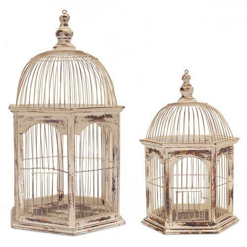 Birdcage Wire - 1