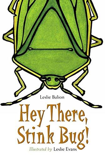 Hey There, Stink Bug! (Indoor Stink Bug Repellent)