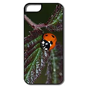 Design Your Own Real Ladybug Love IPhone 5 5s Skin For Gift