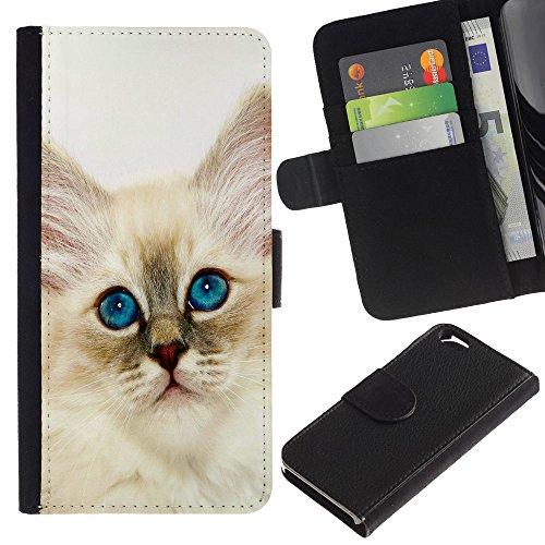 EuroCase - Apple Iphone 6 4.7 - Persian cat ragdoll bobtail curl nebelung - Cuir PU Coverture Shell Armure Coque Coq Cas Etui Housse Case Cover